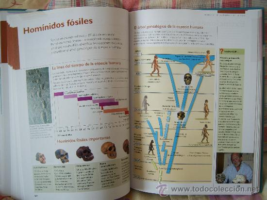Libros de segunda mano: CIENCIAS DE LA TIERRA Y DEL UNIVERSO - Foto 12 - 30846311