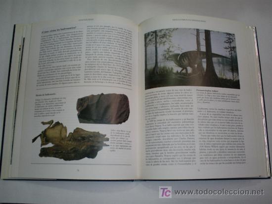 Libros de segunda mano: El mundo de los Dinosaurios DAVID NORMAN Encuentro 1991 RM44213 - Foto 2 - 21626013