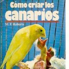 Libros de segunda mano: CÓMO CRIAR CANARIOS. DIETA, APAREAMIENTO Y CUIDADOS (BARCELONA, 1993) CON 103 ILUSTRACIONES FOTOGRÁF. Lote 20588539