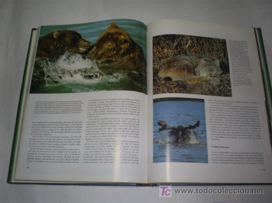 Libros de segunda mano: Parques Nacionales del Mundo 6 TOMOS Nauta 1989 RM46183 - Foto 2 - 29174775
