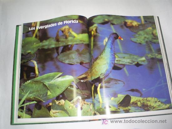 Libros de segunda mano: Parques Nacionales del Mundo 6 TOMOS Nauta 1989 RM46183 - Foto 4 - 29174775