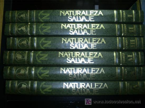 Libros de segunda mano: Parques Nacionales del Mundo 6 TOMOS Nauta 1989 RM46183 - Foto 5 - 29174775