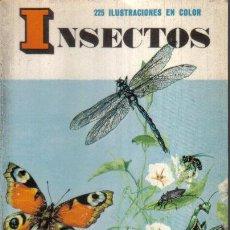 Libros de segunda mano: PEQUEÑA BIBLIOTECA DAIMON: INSECTOS - EDITORIAL DAIMON - AÑO 1969. Lote 82496668