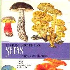 Libros de segunda mano: EL GRAN LIBRO DE LAS SETAS / SUSAETA 1989. Lote 27389289