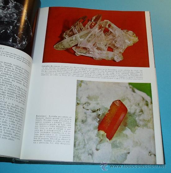Libros de segunda mano: HISTORIA NATURAL. TOMO IV. GEOLOGÍA - Foto 3 - 25136774