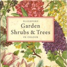 Libros de segunda mano: GARDEN SHRUBS & TREES IN COLOUR / EIGIL KIAER - 1959 * ARBUSTOS * ÁRBOLES * JARDINERÍA *. Lote 24276449