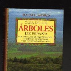 Libros de segunda mano: GUÍA DE LOS ÁRBOLES DE ESPAÑA POR RAFAEL MORO - EDICIONES OMEGA,1998 - 410 PÁGINAS. Lote 27311784