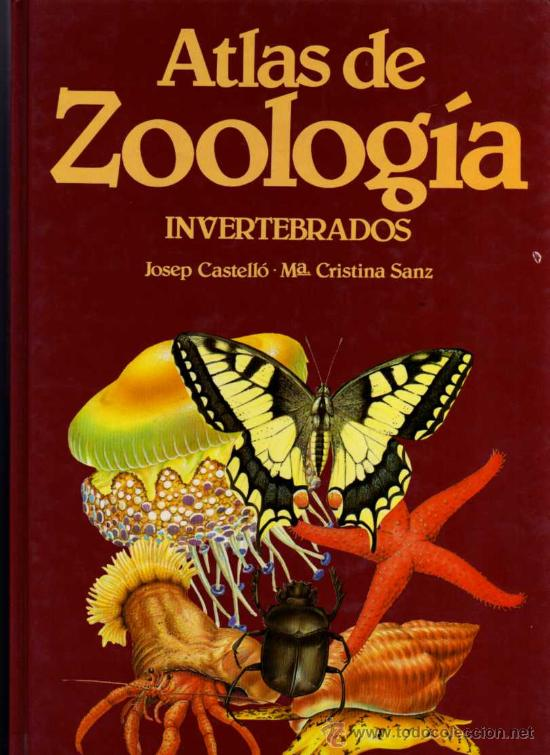 ZOOLOGIA DE INVERTEBRADOS EPUB DOWNLOAD