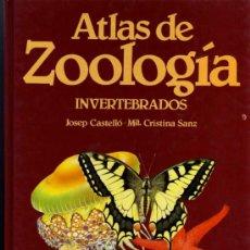 Libros de segunda mano: ATLAS DE ZOOLOGIA - INVERTEBRADOS - J. CASTELLÓ/Mª CRISTINA SANZ - EDIBOOK. Lote 27639743