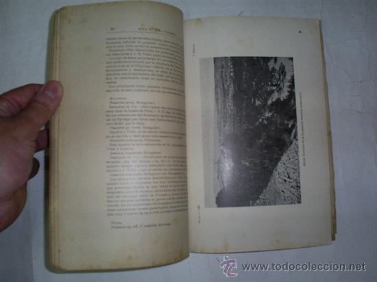 Libros de segunda mano: Mapa Geológico de España. Explicación de la Hoja nº 389. Tárrega 1941 RM52718 - Foto 3 - 28250681