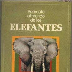 Libros de segunda mano: ACÉRCATE AL MUNDO DE LOS ELEFANTES. JOHN HOLBROOK, ILUSTRACIONES PETER BARRET. EDITORIAL MOLINO.. Lote 28209118