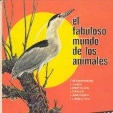 Libros de segunda mano: EL FABULOSO MUNDO DE LOS ANIMALES, MAMIFEROS, AVES, REPTILES, PECES, ANFIBIOS, INSECTOS...... Lote 82067492