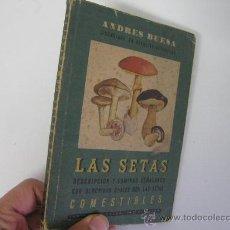 Libros de segunda mano: LAS SETAS DESCRIPCION Y LAMINAS SEÑALANDO CON SEGURIDAD CUALES SON COMESTIBLES, BUESA, BOTANICA. Lote 29824192