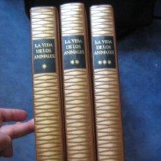 Libros de segunda mano: LA VIDA DE LOS ANIMALES ( 3 TOMOS, COMPLETA) - PLANETA 1975. Lote 29999299