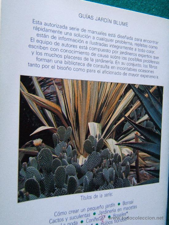Libros de segunda mano: CACTUS Y SUCULENTAS - KEN MARCH - GUIAS JARDIN EDITORIAL BLUME - 1988 - 1ª EDICION ESPAÑOLA - Foto 2 - 30666126