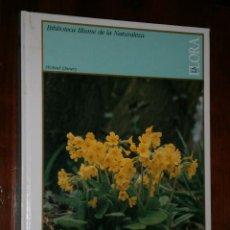 Libros de segunda mano: LA FLORA POR MICHAEL CHINERY DE BLUME EN BARCELONA 1984 PRIMERA EDICIÓN. Lote 30836174