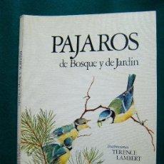 Libros de segunda mano - PAJAROS DE BOSQUE Y DE JARDIN - ALAN MITCHELL Y TERENCE LAMBERT - MENSAJERO.BILBAO - 1978 - 1ª EDIC. - 30980725