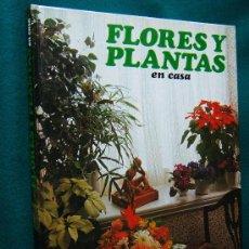 Libros de segunda mano: FLORES Y PLANTAS EN CASA - VIOLET STEVENSON - HMB S.A. - 1978. Lote 30982222