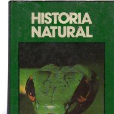 Libros de segunda mano: HISTORIA NATURAL, FAUNA, ANIMALES TERRESTRES Y ANFIBIOS, CLUB INTERNACIONAL DEL LIBRO, MADRID. Lote 148634232