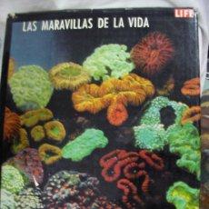 Libros de segunda mano: GRAN TOMO LAS MARAVILLAS DE LA VIDA DE LIFE (EM2). Lote 31806369