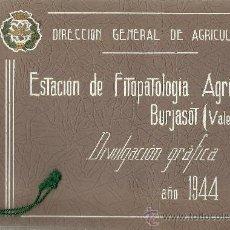 Libros de segunda mano: ESTACIÓN DE FITOPATOLOGÍA AGRÍCOLA DE BURJASOT (VALENCIA) - 1944- 46 * BURJASSOT * AGRICULTURA *. Lote 32348254