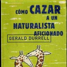 Libros de segunda mano: GERALD DURRELL : CÓMO CAZAR A UN NATURALISTA AFICIONADO (PLANETA, 1997). Lote 32912131