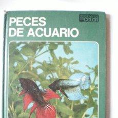Libros de segunda mano: PECES DE ACUARIO EDITORIAL TEIDE S.A.BARCELONA INSTITUTO GEOGRAFICO DE AGOSTINI DE 64 PAGINAS ILUSTR. Lote 33523562