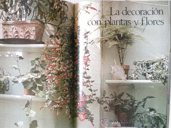 Libros de segunda mano: plantas y flores en casa año 1978 editorial HMB, S.A. provenza barcelona - Foto 5 - 33524756