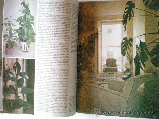 Libros de segunda mano: plantas y flores en casa año 1978 editorial HMB, S.A. provenza barcelona - Foto 6 - 33524756