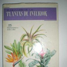 Libros de segunda mano: EL GRAN LIBRO DE PLANTAS DE INTERIOR EDICIONES SUSAETA AÑO 1988. Lote 33543483