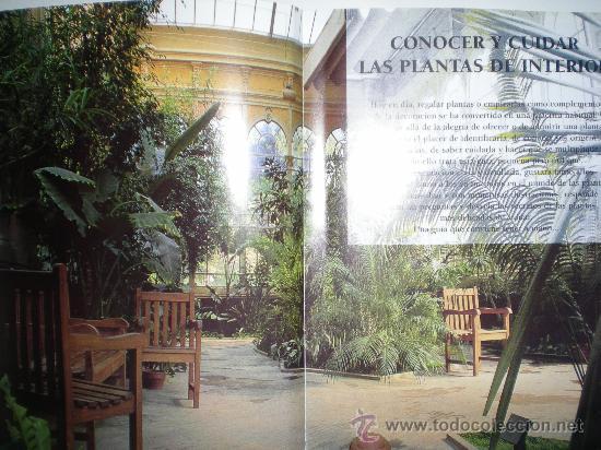 Libros de segunda mano: tu jardin conocer y cuidar las plantas de interior muchas ilustraciones variedades en color susaeta - Foto 2 - 33549258