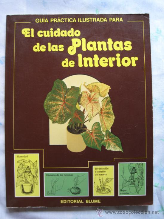 EL CUIDADO DE LAS PLANTAS DE INTERIOR - GUIA PRÁCTICA ILUSTRADA. (Libros de Segunda Mano - Ciencias, Manuales y Oficios - Biología y Botánica)