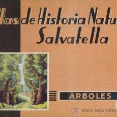 Libros de segunda mano: ATLAS HISTORIA NATURAL SALVATELLA - ÁRBOLES (1952). Lote 37046417