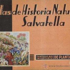 Libros de segunda mano: ATLAS HISTORIA NATURAL SALVATELLA - PLANTAS (1951). Lote 37046432