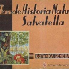 Libros de segunda mano: ATLAS HISTORIA NATURAL SALVATELLA - BOTÁNICA GENERAL (1951). Lote 37046449