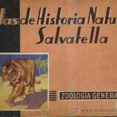 Libros de segunda mano: ATLAS HISTORIA NATURAL SALVATELLA - ZOOLOGÍA GENERAL (1949). Lote 37046469