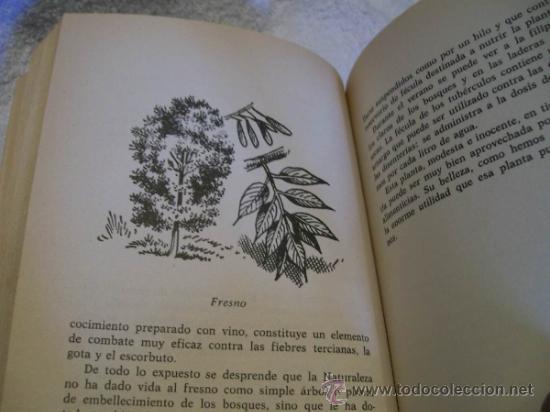 Libros de segunda mano: Plantas que curan y plantas que matan, Dr.Oscar Yarza.Ed. Antalbe ( Botanica - Foto 2 - 37242069