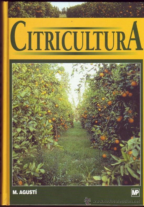 citricultura agusti