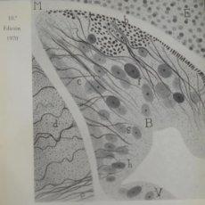 Libros de segunda mano: BIOLOGIA GENERAL. 2 TOMOS. Lote 37802538