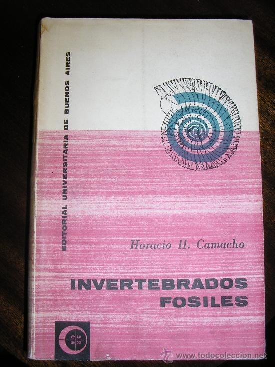 invertebrados fosiles camacho