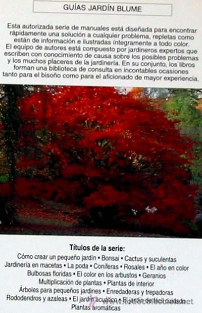 Libros de segunda mano: ARBOLES PARA PEQUEÑOS JARDINES - BLUME 1998 - VER ÍNDICE Y DESCRIPCIÓN - Foto 2 - 38180483