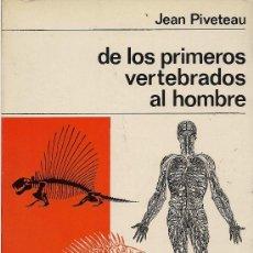 Libros de segunda mano: JEAN PIVETEAU : DE LOS PRIMEROS VERTEBRADOS AL HOMBRE (NUEVA COLECCIÓN LABOR, 1967). Lote 38385966