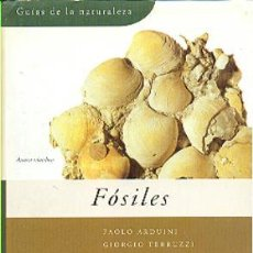 Libros de segunda mano: GUIAS DE LA NATURALEZA GRIJALBO Nº 14 FOSILES - PAOLO ARDUINI Y GIORGIO TERRUZZI. Lote 38515864