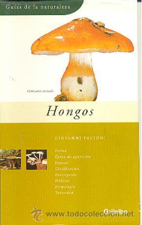 GUIAS DE LA NATURALEZA GRIJALBO Nº 18 HONGOS - GIOVANNO PACIONI (Libros de Segunda Mano - Ciencias, Manuales y Oficios - Biología y Botánica)