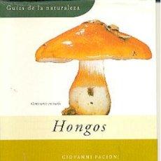 Libros de segunda mano: GUIAS DE LA NATURALEZA GRIJALBO Nº 18 HONGOS - GIOVANNO PACIONI. Lote 38515927