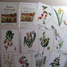 Libros de segunda mano: PLANTAS MEDICINALES. FACSÍMIL. Lote 38665145