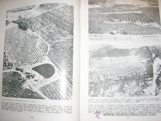 Libros de segunda mano: FRUTICULTURA MODERNA (TOMO 1), por Norman Childers - Edit. Hemisferio Sur - URUGUAY - RARO! - Foto 4 - 38705347