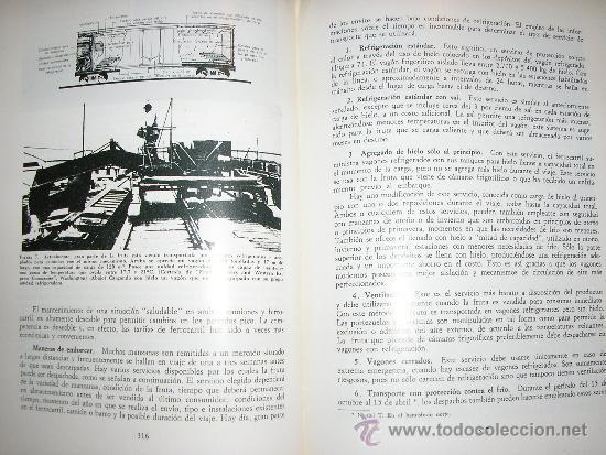 Libros de segunda mano: FRUTICULTURA MODERNA (TOMO 1), por Norman Childers - Edit. Hemisferio Sur - URUGUAY - RARO! - Foto 7 - 38705347