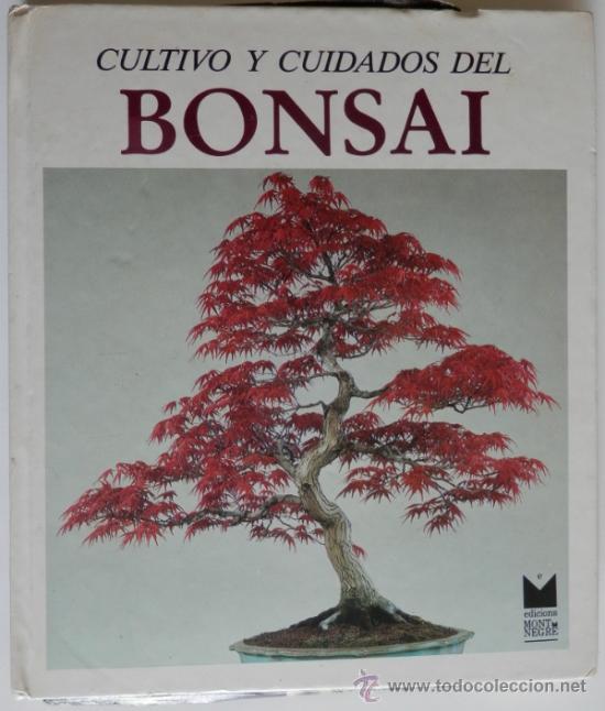 Cultivo y cuidados del bonsai richie donald comprar libros de biolog a y bot nica en - Cultivo del bonsai ...