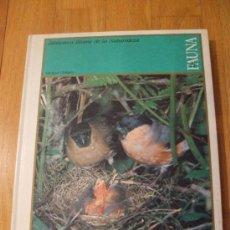 Libros de segunda mano: GUIA PRACTICA ILUSTRADA DE LA FAUNA, MICHAEL CHINERY BIBLIOTECA BLUME. Lote 39096002